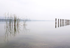 Foggy day at Lake Balaton,Hungary Stock Images