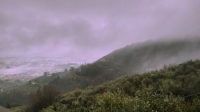 The fogs. Foggy day today Stock Photography