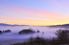 Foggy Deer lake park at sunrise Royalty Free Stock Image