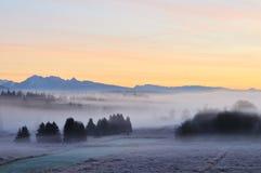 Foggy Deer lake park at sunrise Stock Photos