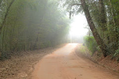 Foggy dirt road Royalty Free Stock Photography