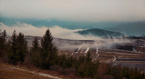 Foggy dramatic meadow and mountain landscape with forest and mis. T Stock Images