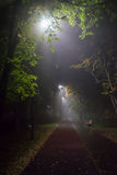Foggy evening in the park. Heavy fog descended on the alley in the Park with lanterns in the late evening Royalty Free Stock Image