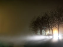 Foggy evening by the river, with trees. Swirling mist, atmospheric scene. Royalty Free Stock Photography