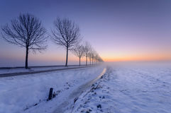 Foggy Fairytale. A cold winters sunrise in the Weipoort, Zoeterwoude, the Netherlands Royalty Free Stock Image
