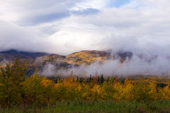 Foggy fall boreal forest taiga hills Yukon Canada. Autumn fall boreal forest taiga hills partly covered in clouds and fogs, Yukon Territory, Canada Royalty Free Stock Photo