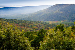 Foggy fall morning amidst a gorgeous valley royalty free stock photos