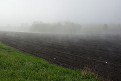 Foggy Farm Field Royalty Free Stock Images