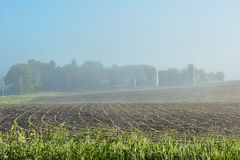 Foggy Farm Site 2 Royalty Free Stock Image