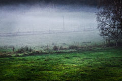 Foggy field. Fog over some green fields Royalty Free Stock Photos