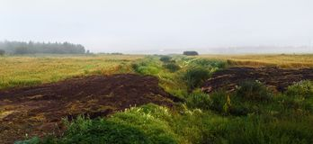 Foggy field landscape. Arable land and thickets of grass in the fog. Foggy field landscape. Panorama shot Stock Images
