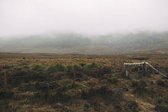 Foggy field on the mountain Royalty Free Stock Photo