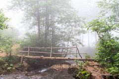 Foggy Forest and Bridge over Stream Royalty Free Stock Images
