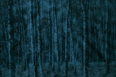 Foggy forest at dusk Royalty Free Stock Image