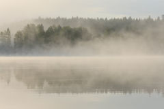 Foggy forest and lake at dawn. Finland Stock Images