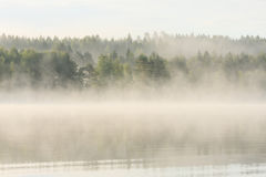 Foggy forest and lake at dawn. Finland Stock Photography