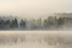 Foggy forest and lake at dawn. Finland Royalty Free Stock Image