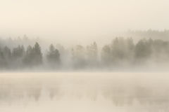 Foggy forest and lake at dawn. Finland Royalty Free Stock Photo