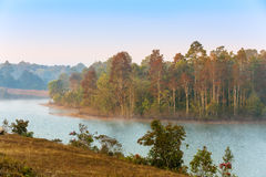 Foggy forest. Landscape of a Foggy forest reservoir Royalty Free Stock Image