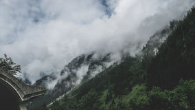 Foggy Forest Mountain during Day Time Royalty Free Stock Images