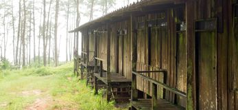 Foggy forest and wooden building. Royalty Free Stock Photos