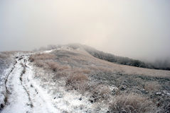 Foggy and frosty landscape of mountains. Bieszczady. Poland Stock Photography