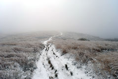 Foggy and frosty landscape of mountains. Bieszczady. Poland stock images