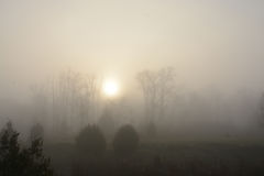 Foggy, gloomy landscape with rising sun. Stock Photos