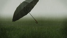 Foggy grassy field and flying umbrella Royalty Free Stock Photography