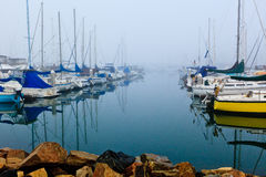 Foggy Harbor Stock Image