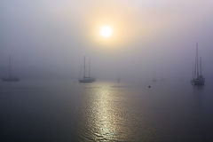 Foggy Harbor and Sailboats. The dense fog has shut off the view of any land as the sun tries in vain to break through casting a faint reflection across the water stock images