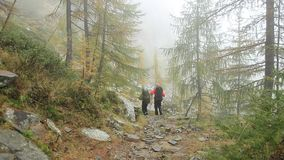 Foggy hike stock footage