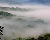 Foggy Hills. The fog lies low in the hills of Tennessee Stock Photos
