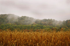 Foggy hills in the fall in rural Indiana. Stock Photos
