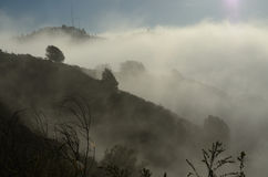 Foggy Hills Royalty Free Stock Images