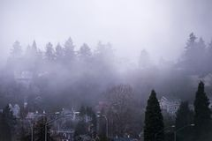 Foggy Hills of the West. Foggy morning at the West Hills of Portland, OR Royalty Free Stock Image