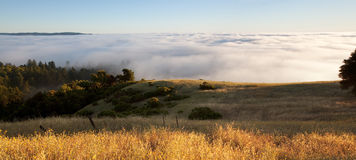 Foggy hillside panorama Stock Image