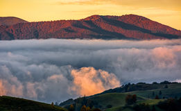 Foggy and hot sunrise in Carpathian mountains Stock Photography