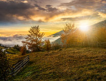 Foggy and hot sunset in Carpathian mountains. Cold morning fog with golden hot sunset in the mountainous rural area. trees with red foliage near the fence on the Royalty Free Stock Photo