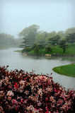 Foggy Japanese Garden Royalty Free Stock Image
