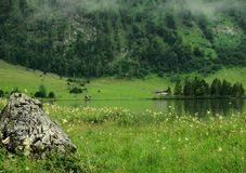 Foggy Koenigsee, Germany. Beautiful foggy view on the lake Königsee with a big stone in the foreground, Germany Stock Images