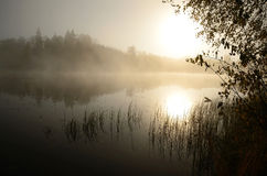 Foggy lake Royalty Free Stock Images
