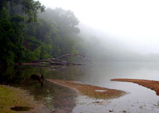 Foggy Lake. Quiet lake with fog in the distance Stock Photo