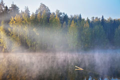 Foggy lake Royalty Free Stock Photography