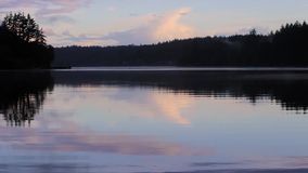 Dusky lake with birds