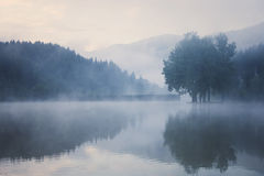 Foggy lake before dawn Royalty Free Stock Photos