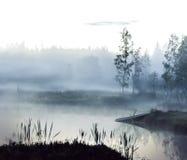 Foggy lake Royalty Free Stock Image