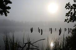 Foggy lake landscape Royalty Free Stock Image