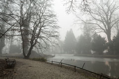 Foggy lake morning Royalty Free Stock Photos