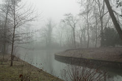 Foggy lake morning Royalty Free Stock Photo